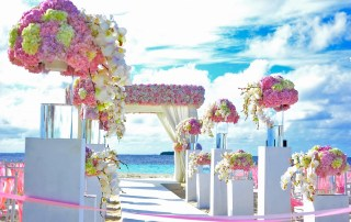 planning your wedding reception