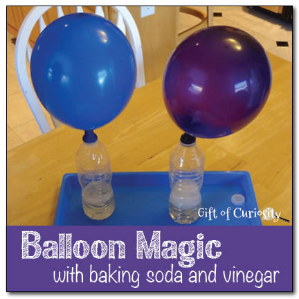 Balloon magic with baking soda and vinegar || Gift of Curiosity