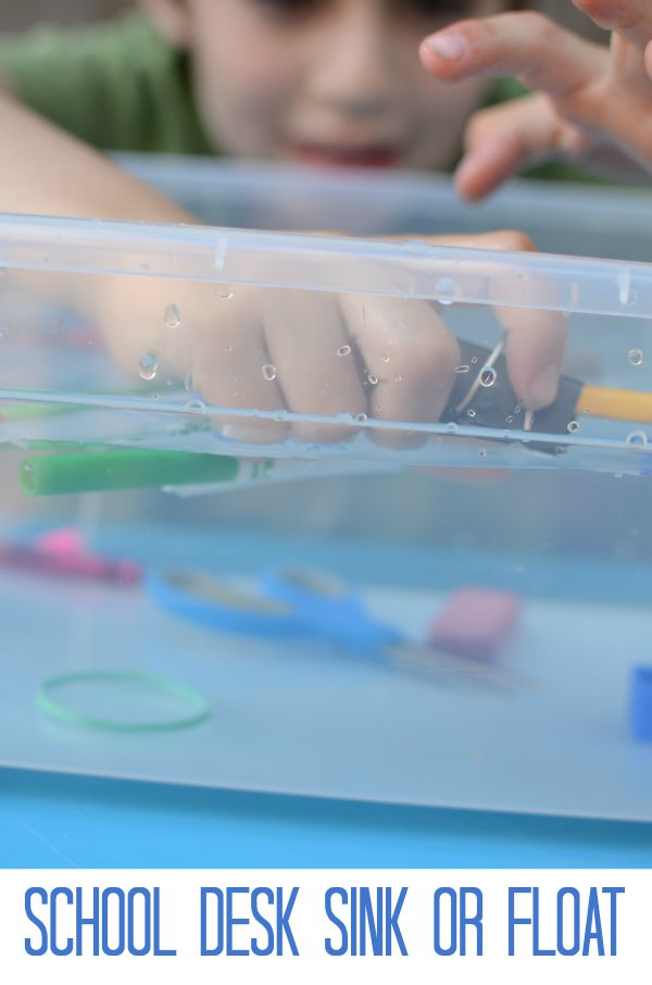 School Desk Sink or Float! A science experiment with objects kids use every day!