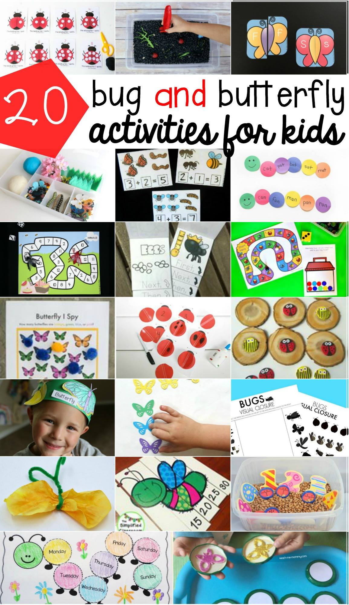 Bugs and butterfly activities for kids