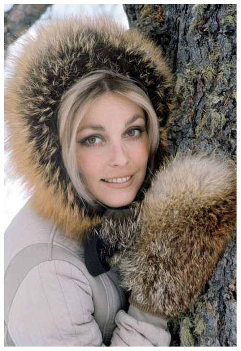 sharon leaning against treesharon-tate