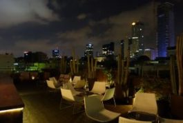 Brown Urban Hotel Tel Aviv (12)