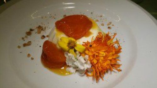 Greek Yogurt Panna Cotta with Tipsy Apricot Compote