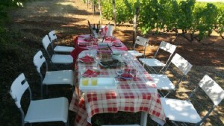 Elinos - Lunch in the Vineyard