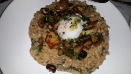 Farro Risotto, poached egg, oyster mushrooms, parmesan
