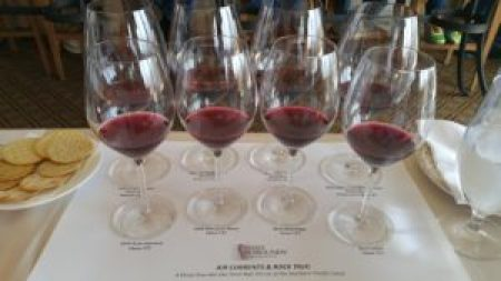 Terroir, Clone 777 and Pinot Noir