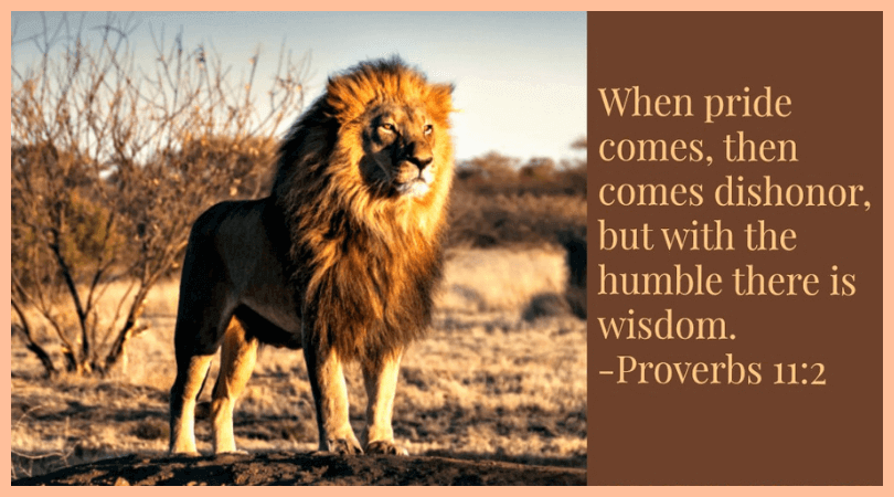 When pride comes, then comes dishonor, but with the humble there is wisdom. -Proverbs 11:2