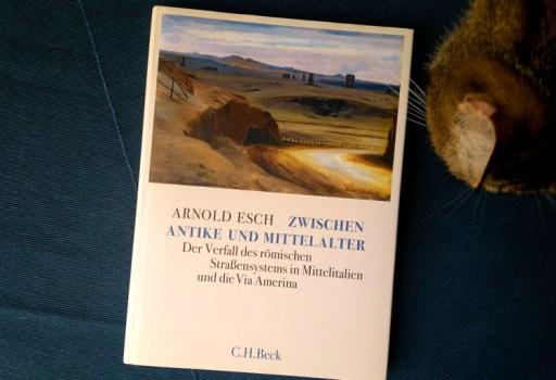 Arnold Esch - Zwischen Antike und Mittelalter. Der Verfall des römischen Straßensystems in Mittelitalien und die Via Amerina