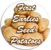"<span class=""light"">First</span> earlies seed potatoes"