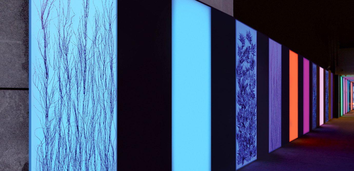 Lightpanel Flachiges Licht Als Gestaltungselement Plexiglas