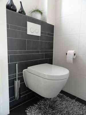 toilettes suspendus
