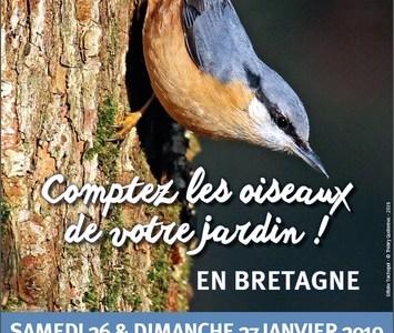 Comptez les oiseaux de votre jardin
