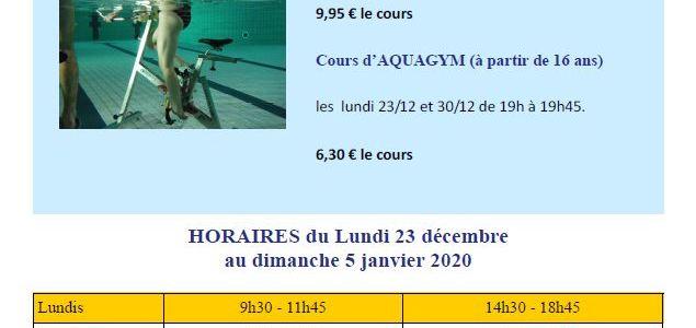 programme des activités de noël à la piscine Goëlys