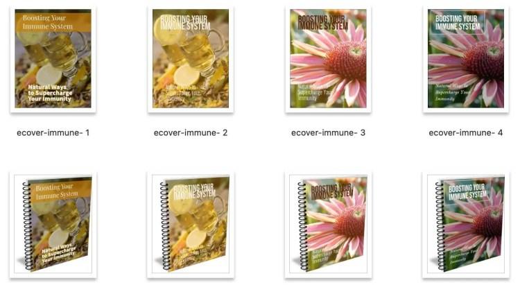 Boost-immune-system-plr-ebook-covers
