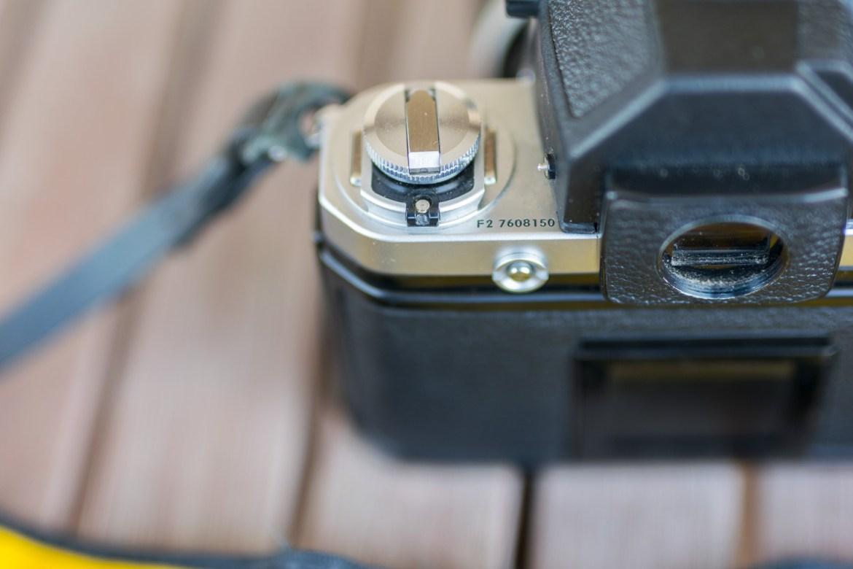 plucciola_2016_Nikon F2 dettaglio