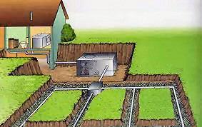 septic tank drain field Septic Tank Pumping