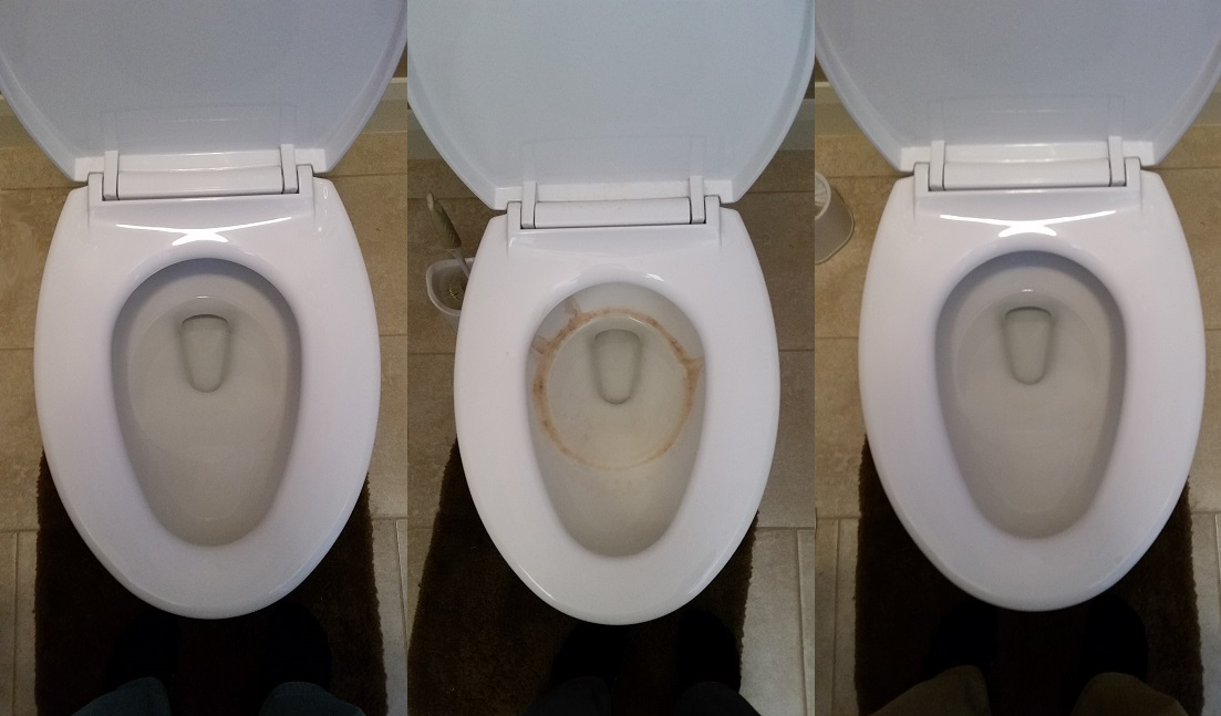 Toto Vs American Standard Toilets Product Comparison