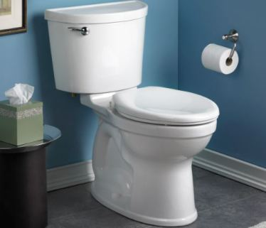 Champion Pro Right Height elongated toilet
