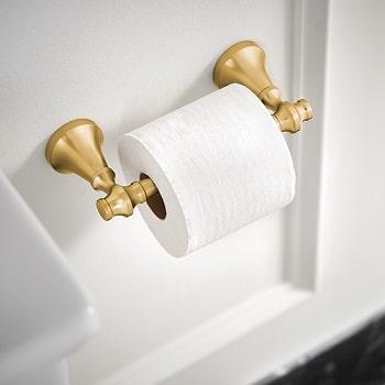 moen colinet toilet paper holder installed