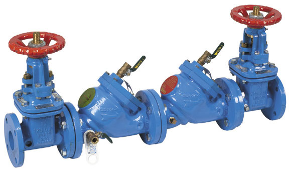 Example of a double check backflow prevention valve