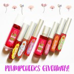 PLUMPCHEEKS BLOG | FACEBOOK & INSTAGRAM GIVEAWAY! (CLOSED)