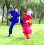 Hua Shan Boxing duet