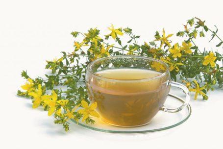 Tee Johanniskraut- tea St Johns wort 03