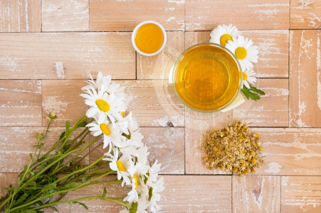 chamomile tea with lemon and honey on the wood background