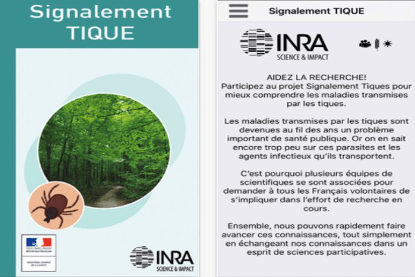 application signalement tique