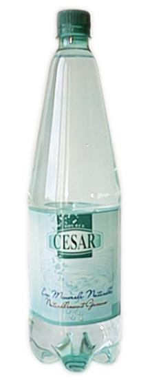 St Alban César