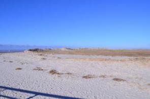 Am Strand von St.-Peter-Ording - Bild: PlusPerfekt.de