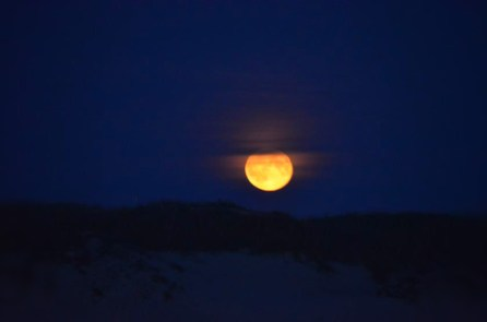 Blick vom Strand zum Mondaufgang über der Düne I September 2015