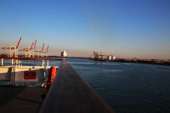 Abendstimmung am Fährhafen