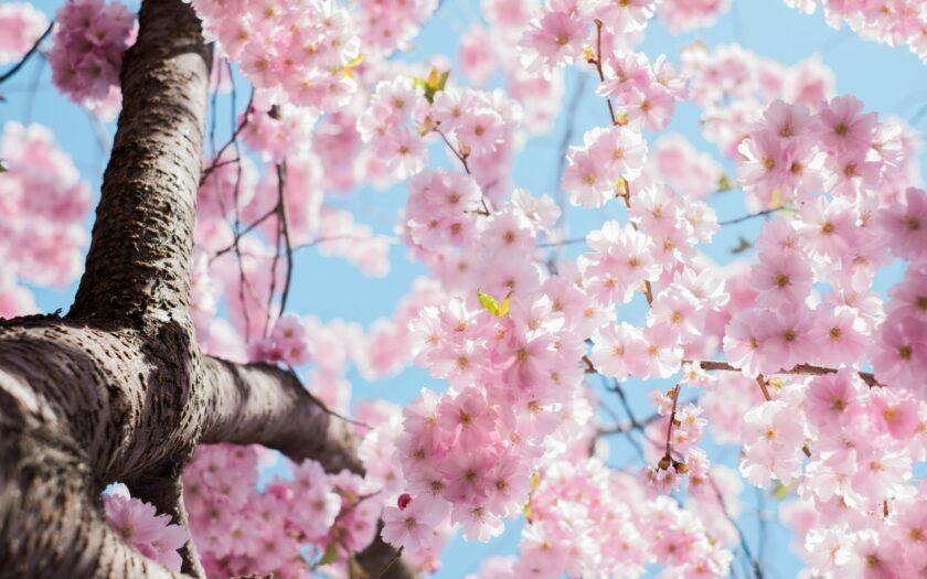 Spring Style Party mit Ingrid Angehrn | Kreiere neue Looks aus deinem Kleiderschrank