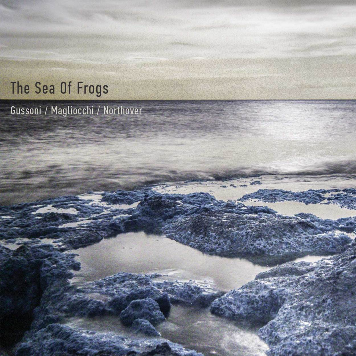 Gussoni / Magliocchi / Northover – The Sea Of Frogs