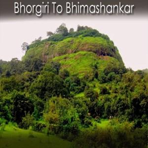 Bhorgiri Bhimashankar Trek