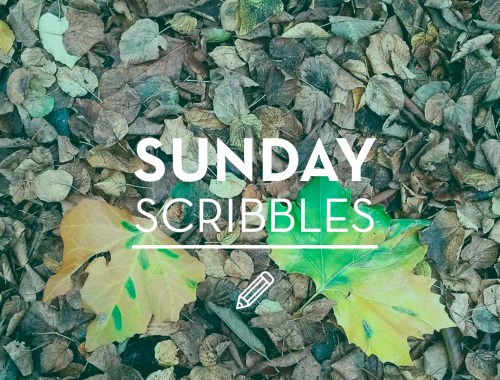 "An image of leaves with ""Sunday Scribbles"" in text on top of it"