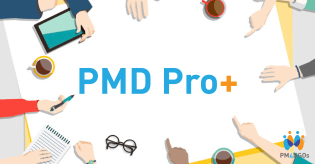PMD Pro+, PMD Pro Plus, Project Manager, Project Management