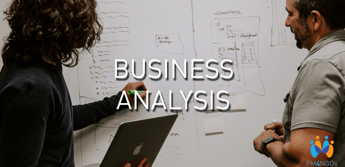 5 Important skill set a business analyst must possess