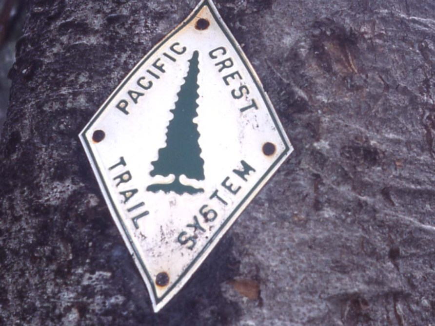Quick and Dirty Guide to The Pacific Crest Trail |