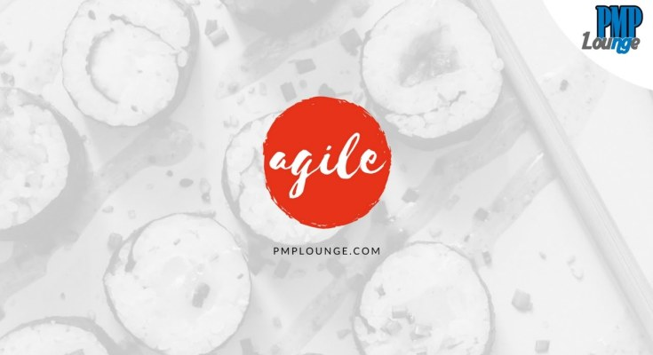 agile model - Agile Methodology