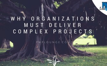 why organizations must deliver complex projects - Why organizations must deliver complex projects?