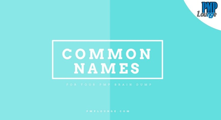 common names for your pmp brain dump - List of Common Names for your PMP Brain Dump