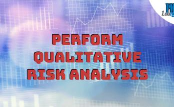 perform qualitative risk analysis process - Perform Qualitative Risk Analysis Process