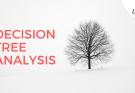 decision tree analysis - Decision Tree Analysis