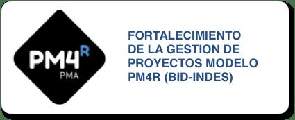 fortalecimiento de la gestion de proyectos modelo PM4R