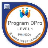Program DPro Foundation