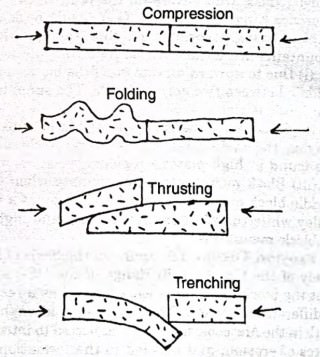 geology - compresson - thrusting - folding - trenching