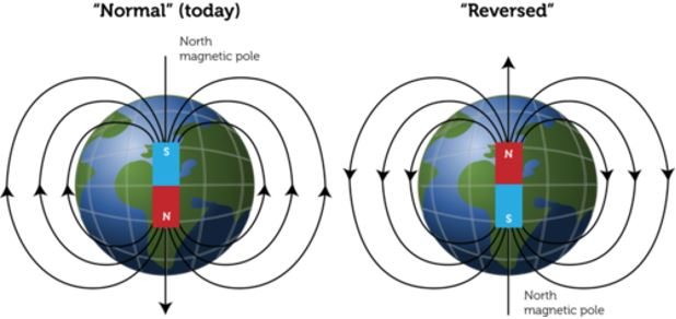 magnetic field - normal - reversed