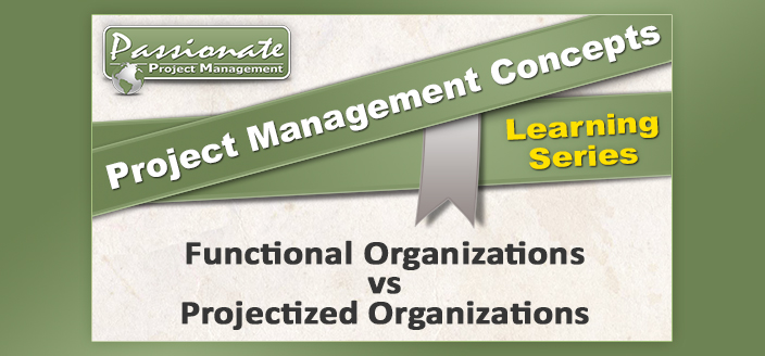 Functional Organizations vs Projectized Organizations